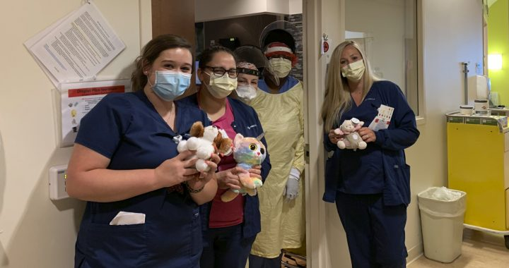 Fairfield Hospital nurses with some of their stuffed animals.
